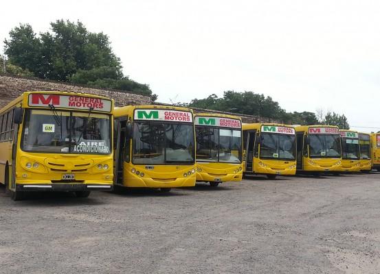 rosario-bus-2
